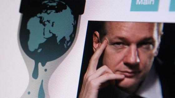 julian Assnage wikileaks