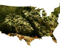 House Passes Historic Marijuana Bill, Setting Up Green Gold Rush